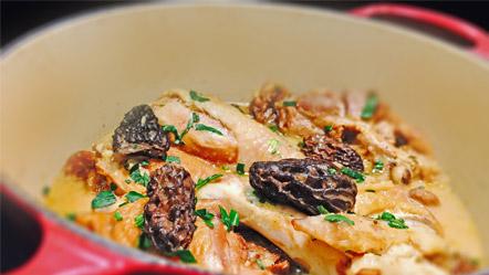 Cocotte de volaille de bresse aux morilles recettes miele - Cuisiner morilles sechees ...